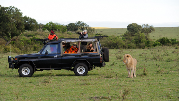 Open Landcruiser form Enkewa watching lion