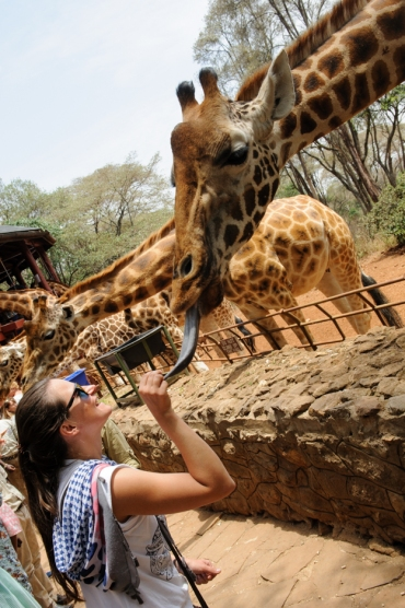Giraffe Center-002