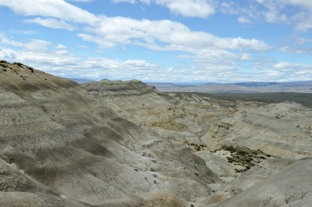 PetrifiedForest-1